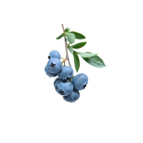 Голубика садовая замороженная